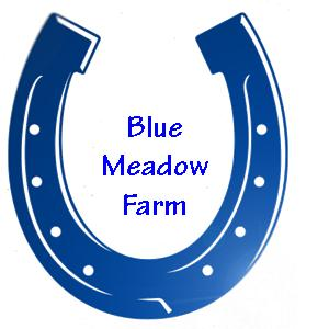 Blue Meadow Farm Logo